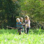 Drei Kinder sammeln auf der Lichtung Brennholz
