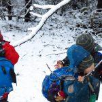 Kinder mit Rucksäcken schlecken Schnee von Ästen