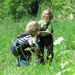 Zwei Kinder in Latzhose spielen mit Holzstecken im hohen Gras